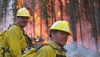 Regional stakeholders need to be involved in rural fire management